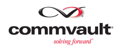 Lewan Commvault Platinum Partner