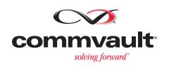 Lewan Commvault Platinum Partner